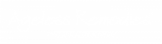 Ageless Remedieslogofooter-05